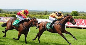 Ground To Suit Sneezy Filly At Naas